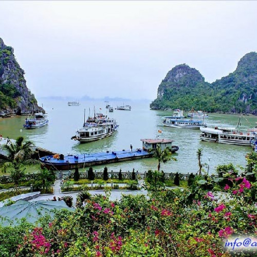 Heaven Palace Cave - Ha Long Bay