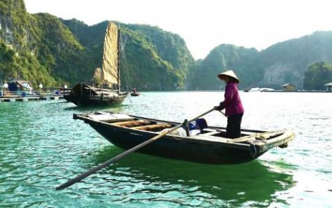 Bai Tu Long Bay Day Trip - Standard Cruise