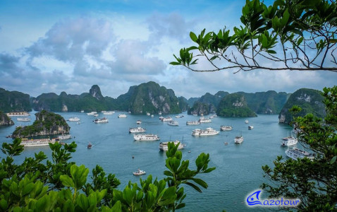Ha Long Bay One Day - 5HRS On Halong Cruise