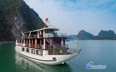 Camellia Cruise