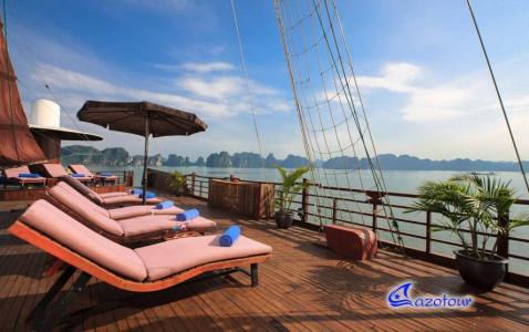 Pelican Cruise - Deluxe Boat