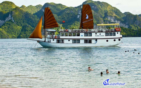 Phoenix Cruiser - Budget Cruise