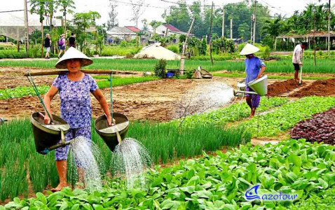 Hoi An Farming & Fishing Tour