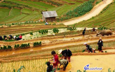 Majestic Vietnam: Vietnam Discovery 18 Days - SIC