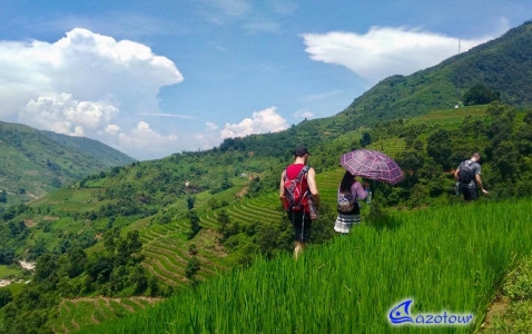 Hanoi - Sapa - Ha Giang: Mountains and Rice Fields